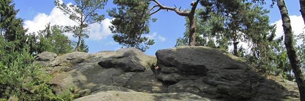 Kletterfreizeit am Dreikaiserstuhl (Teutoburger Wald)