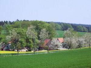 Holperdorper Teutoburger Wald @ Startpunkt: Pendlerparkplatz A43/B58 Abfahrt Haltern | Haltern am See | Nordrhein-Westfalen | Deutschland